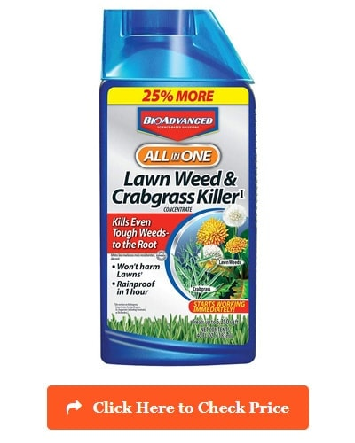 Bayer Advanced 704140 Lawn Weed & Crabgrass Killer