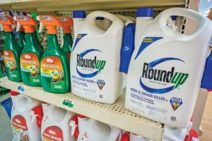 Choose the Best Weed Killer