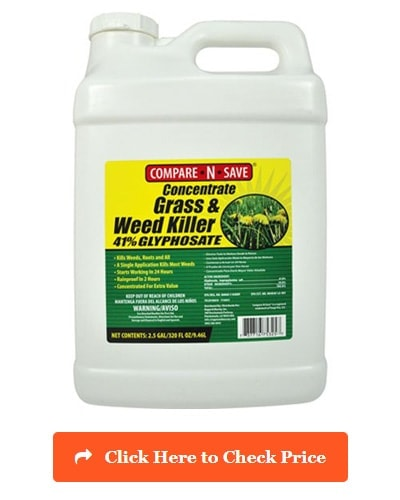 Compare-N-Save Concentrate Grass & Weed Killer
