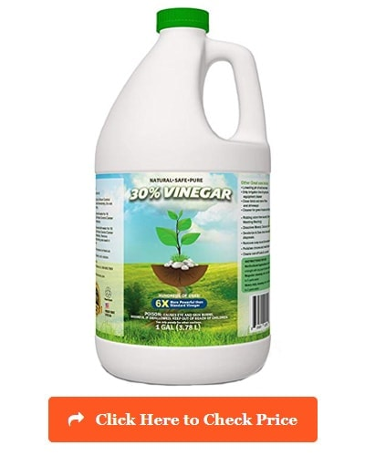 Eco Clean 30% Pure Vinegar