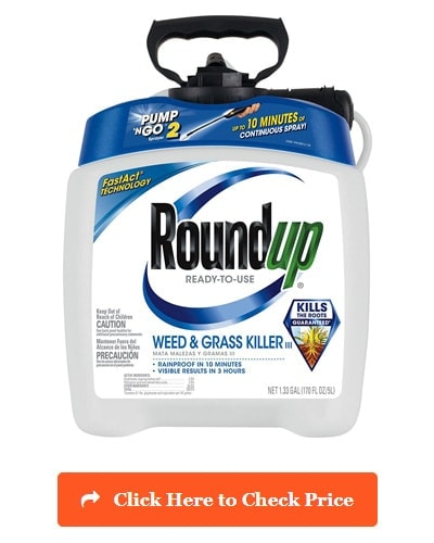 Roundup 5100110 Weed & Grass Killer III