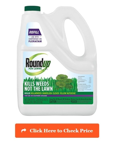 Roundup for Lawns RTU Refill