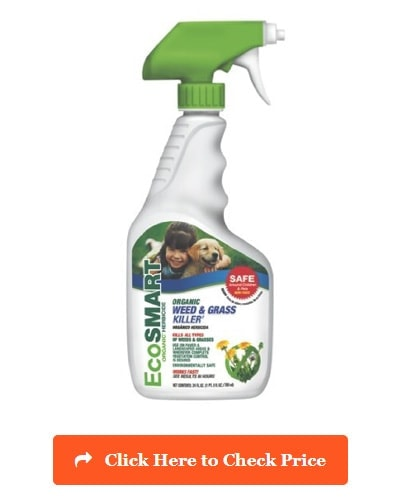 Pet Friendly Weed Killer 2019 Get Rid Of Weeds Amp Safe