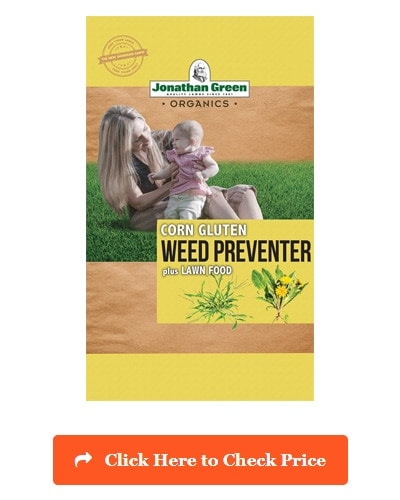 Pet Friendly Weed 2019 Get Rid Of Weeds Safe For