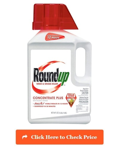 Roundup Grass & Weed Killer Concentrate Plus