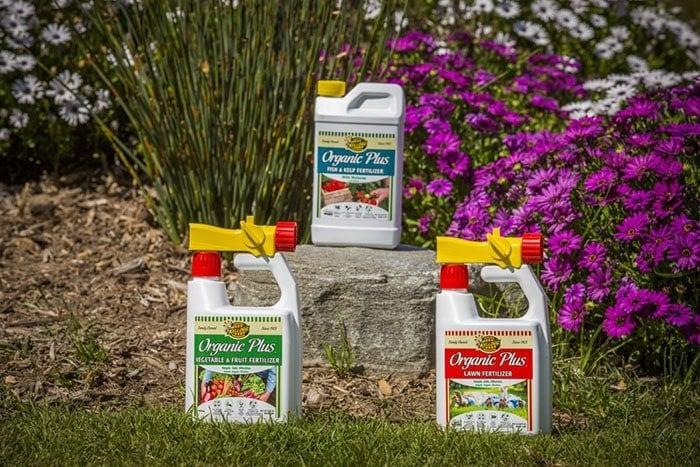 Choose Best Weed Killer for Lawns