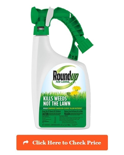 Roundup For Lawns RTS (Northern)