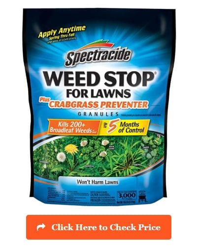 Spectracide Weed Stop for Lawns Plus Crabgrass Preventer Granules
