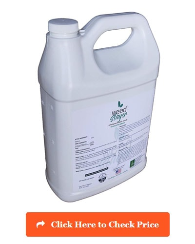 Weed Slayer Organic Herbicide