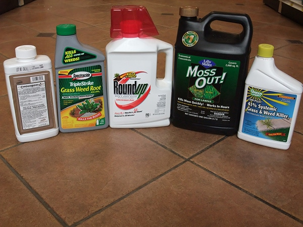 Strongest Weed Killer in 2019 – 10 Herbicides that Kill