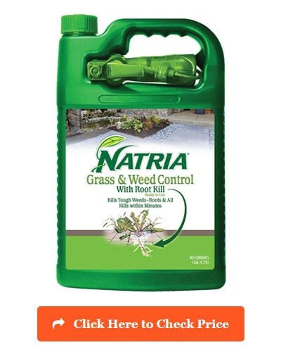 Natria Grass and Weed Control