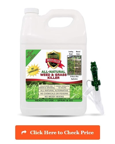 Best Weed Killer Top 10 Safest Herbicides On The Market