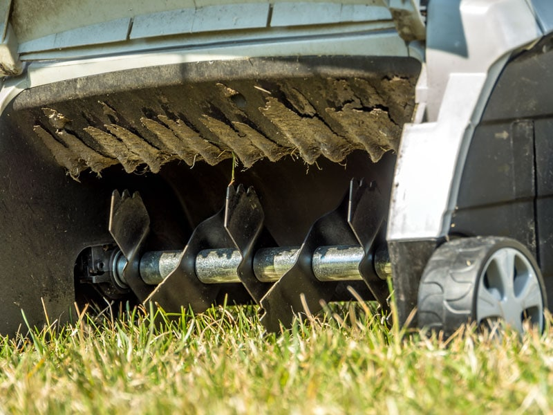 Best Time To Aerate Your Lawn
