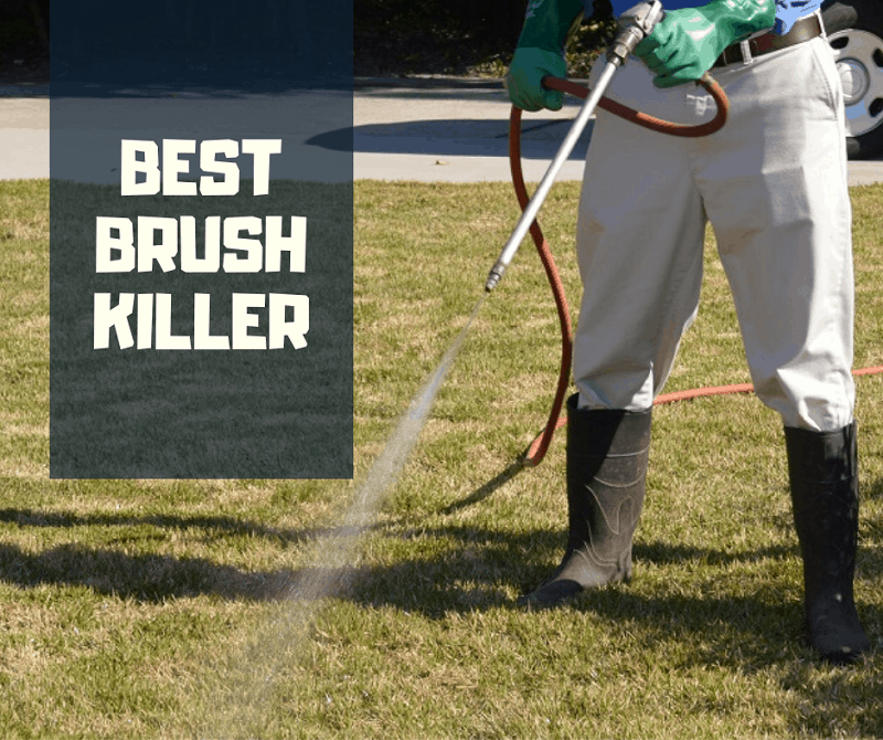 best brush killer