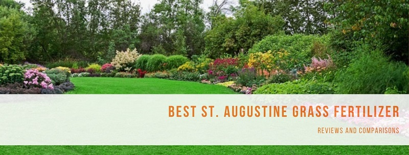 best fertilizer for st augustine grass